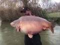 Muž v Maďarsku chytil v jazere monštrum: FOTO Ryba ako svet! Takéto čosi ste ešte nevideli