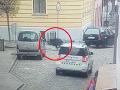 VIDEO Panika v Česku: Diviak sa vybral na nákupy do mesta, demolácia obchodu a zranená žena