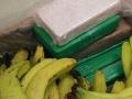 V Poľsku našli kokaín z Ekvádora.