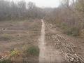 Pečniansky les v Petržalke sa radikálne mení: VIDEO Smutný pohľad na pľúca Bratislavy