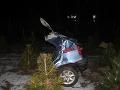 Vodička nevinne pribrzdila na moste: Hrozivé následky nehody, FOTO auto na dve polovice