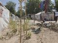 Viac ako 29-tisíc ľudí v súčasnosti žije v tábore v Bame, kde sa nachádza viac ako 60-tisíc nových prišelcov. Niektorí z nich tam boli takmer dva roky a sú úplne závislí od humanitárnej pomoci na ich prežitie. Ísť mimo tábor na farmu je obmedzené a môže byť veľmi nebezpečné. Ľudia začali pestovať listy vedľa svojich stanov.