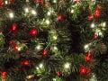 Rusi osadili vianočný stromček na netradičnom mieste: Tu by ste ho asi len tak nehľadali
