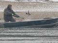 Brutálny lov na kačice divé.