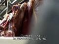 Zakážu pre škandál s mäsom z chorých kráv dovoz poľských potravín? V ceste tomu stojí nariadenie