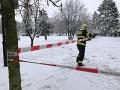 VIDEO Snehová kalamita zasiahla susedné Česko: Dopravný kolaps a desaťtisíce ľudí bez elektriny