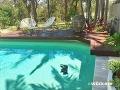 Majiteľ domu prišiel domov a toto našiel v bazéne: Ľudí smutná FOTO zhrozila