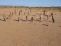 Toto by na púšti nikto nečakal: Sahara je pokrytá záhadnými monumentmi