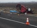 Pri nehode neďaleko Želiezoviec vyhasli dva životy.
