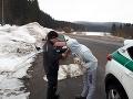 Vodič so psom v ruke nafúkal 1,27 promile alkoholu.