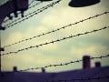 Vo väzení väzni žijú, čakajú na... Omyl, títo nemuseli, filigránske využitie situácie