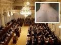 V českom parlamente vypukli osýpky.