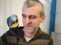 Na letisku v Dubline našli papagája: VIDEO Slovák musel dokázať, že je skutočne jeho