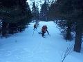 Skupinu maďarských horolezcov strhla pod Pfinnovou kopou v Malej Studenej doline lavína