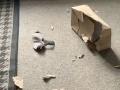 FOTO Pes roztrhal balík, ktorý prišiel susede: Keď majiteľka videla, čo je v ňom, očervenela od hanby