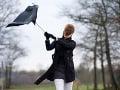 Slovensko, VÝSTRAHA prvého stupňa: Počasie sa jaší, niektoré oblasti pod návalom silného vetra