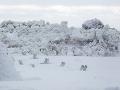 FOTO Domáci neverili vlastným očiam: Pri metropole vznikla osemmetrová ľadová stena