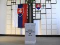 Prezidentské voľby 2019: Hlasovať prišli Slováci z Viedne, Prahy, ale i Argentíny