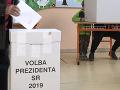 Voľby prezidenta 2019: Slováci zo zahraničia by prijali možnosť voliť aj z cudziny