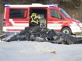 Pri havárii lietadla zomreli traja ľudia, dvaja ďalší po zrážke so zasahujúcou políciou