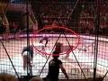 Hrozný výjav pred očami detí: VIDEO Lev v cirkuse napadol cvičiteľa, diváci kričali od strachu