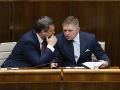 Slovensko zrejme čaká sprísnenie interupcií: SNS a Smer-SD idú do toho