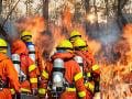 Grécki hasiči v plnom nasadení: Bojujú s rozsiahlym požiarom neďaleko továrne na zbrane