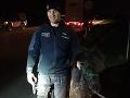 Znovu ako v ZOO! Po Trnave sa prechádzal poník: FOTO Policajti na nohách, kilometer prenasledovania