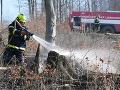 Pod Tatrami sa opäť rozhorelo: Požiar v národnom párku zničil niekoľko hektárov lesa