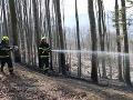Vyše sto hasičov bojovalo s lesnými požiarmi na Kysuciach: FOTO Prácu im sťažoval vetrisko