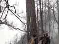 Obrovské požiare na konci marca si vyžiadali 30 mŕtvych: Katastrofu mal spôsobiť blesk
