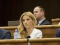 Veľvyslanci namietajú Šimkovičovej zákon: Vyzývajú NR SR, aby myslela na deti