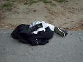 Ticho okolo brutálneho kyselinového útoku v Nových Zámkoch: Páchateľ polícii naďalej uniká