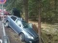 Tragédia v Demänovskej Doline: Rodina sa vracala z lyžovačky, zomrela mama (†32) dvoch detí