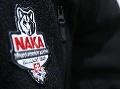 Akcia NAKA: Organizovaná skupina