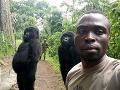 Selfie, ktorou sa nemôže pochváliť len tak hocikto: Gorily prekvapili, takéto niečo je nevídané