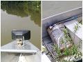 Hliadka z rieky na hranici s Ukrajinou vytiahla balík: FOTO Šokujúci nález, boli ich tam tisícky