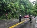FOTO Pod Strečnom padol strom: Tvorili sa obrovské kolóny, cesta bola uzavretá dve hodiny