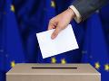 Naša účasť v eurovoľbách