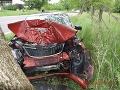 FOTO Tvrdý náraz do stromu, z auta zostal vrak: Tento vodič (63) sa druhýkrát narodil