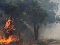 Na juhu Grécka sa lesom šíri veľký požiar: Zasahuje až štyridsať hasičov a dve lietadlá