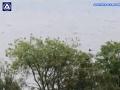 VIDEO Manželia sa kochali výhľadom na krásne jazero: Vtom zastali, čo to, preboha, pláva v jazere?!