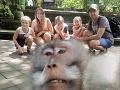 Rodina si po návrate z dovolenky prezrela FOTO: Pozrite na to vulgárne gesto opice!