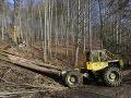 Ekológ bije na poplach: Lesy SR ťažia v chránenej oblasti Nízkych Tatier a ohrozujú hlucháňa
