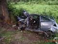 Alkohol zaviedol vodiča (42) do stromu: Obrovské šťastie, nemal ani vodičák