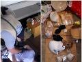 Protidrogový zásah NAKA v Bratislave: VIDEO Policajti zadržali desať osôb, hrôzostrašný nález
