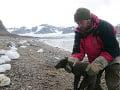 Vedcov ohromila neuveriteľná cesta polárnej líšky: Za štyri mesiace prešla takmer 4500 km