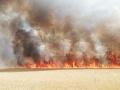 Hasiči v Taliansku bojujú s rozsiahlymi lesnými požiarmi: Hlásia mŕtveho