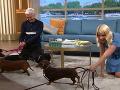 Holly Willoughby sa snažila dať psíkom priestor.