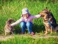 Radi sa hráte so svojím psom alebo mačkou? Túto správu by ste mali jednoznačne vedieť!